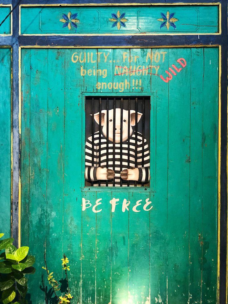 Not Wild Enough Piggie in Jail